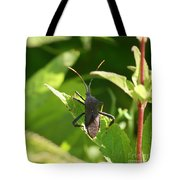 A Bugs Life  Tote Bag