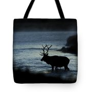 A Bull Elk Crosses The Madison In The Early Morning  Tote Bag