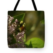A Bumble Tote Bag