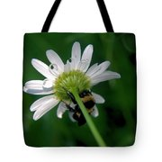 A Bumble On The Wrong Side Tote Bag