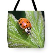A Busy Lady Tote Bag