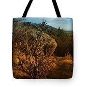A Cactus In The Sandia Mountains Tote Bag