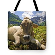 A Calf In The Mountains Tote Bag