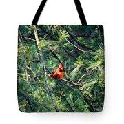 A Cardinal Rule Tote Bag