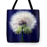A Childs First Wish Tote Bag