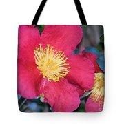 A Christmas Blossom Tote Bag