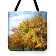 A Chromatic Fall Day Tote Bag