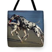 A Clash Of Wills Tote Bag