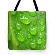 A Cleansing Morning Rain Tote Bag