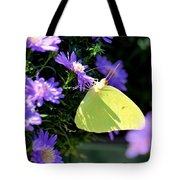 A Clouded Sulphur On Lavender Mums Tote Bag