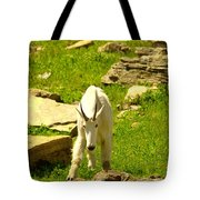A Goat Coming Down The Trail Tote Bag