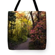 A Colorful Path  Tote Bag