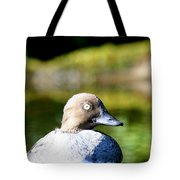 A Common Goldeneye Portrait Tote Bag