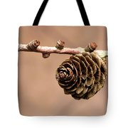 A Conifer Cone On A Tree Branch Tote Bag