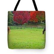 A Couple Horses And Beautiful Autumn Trees Tote Bag