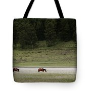 A Couple Of Horses Standing Tote Bag