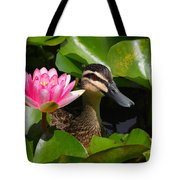 A Curious Duck And A Water Lily Tote Bag