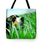 A Cute Dog In The Grass Tote Bag