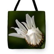 A Daisy Blooming Tote Bag