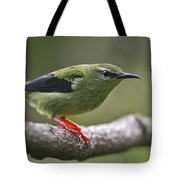 A Dash Of Red... Tote Bag
