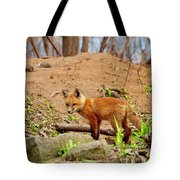 A Day At The Den Tote Bag