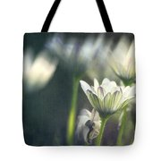 A Day In August Tote Bag