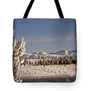 A Day Of Winter Tote Bag