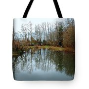 A Day To Reflect Tote Bag