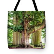 A Day Without You. Park Of The De Haar Castle Tote Bag by Jenny Rainbow