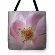 A Delicate Rose Tote Bag
