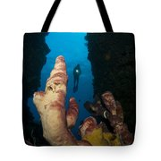 A Diver Looks Into A Cavern Tote Bag by Steve Jones