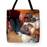 A Dog Stands At The Feet Of Its Owner Tote Bag