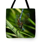 A Dragonfly Tote Bag