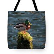 A Drake Mallard Perches On A Piling Tote Bag