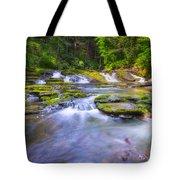 A Dream In The Stream  Tote Bag