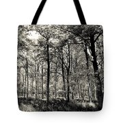 A English Forest Tote Bag