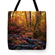 A Fall Forest  Tote Bag