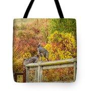 A Fall Photo Tote Bag