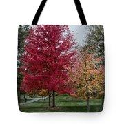 A Fall Stroll Tote Bag