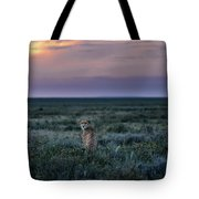 A Female Cheetah, Acinonyx Jubatus Tote Bag
