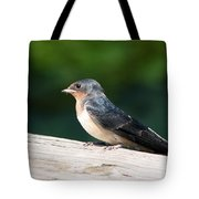 A Female Purple Martin Is Watching You Tote Bag