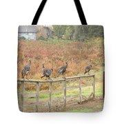 A Fence Line Of Fall Turkeys Tote Bag