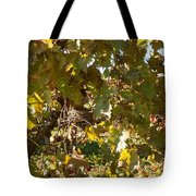 A Few Grapes Left For The Birds Tote Bag