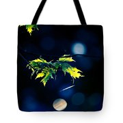 A Few Leaves In The Sun Tote Bag