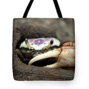 A Fiddler Crab Around Hilton Head Island Tote Bag