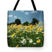 A Field Of Spring Tote Bag