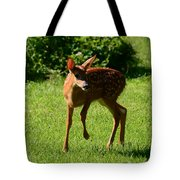 A Fine Little Fawn Tote Bag by Lori Tambakis
