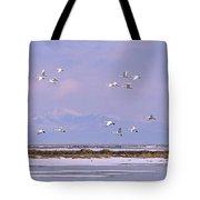 A Flock Of Swans Flies Over Water Tote Bag