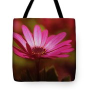 A Flower In A Shadow  Tote Bag