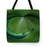 A Fly And His Shadow Polar View Tote Bag